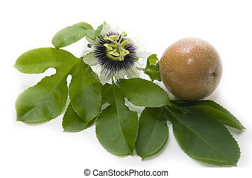 Close up passion fruit and passionflower on white background...