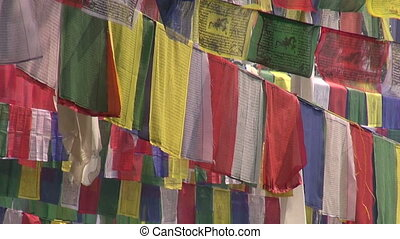 trees with Buddhist praying flags Lord Buddha birthplace in...