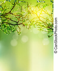 Background with selective focus EPS 10 - Natural green...