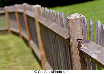 Wood fence and grass in a sunny day