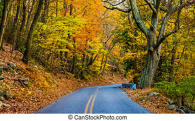 Autumn color along a road at Pen Mar County Park, Maryland....