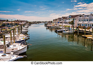 Boats and houses in the harbor at Point Pleasant Beach, New...