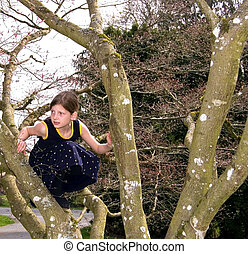 Girl Climbed Too High - Young girl is climbing a tree in a...