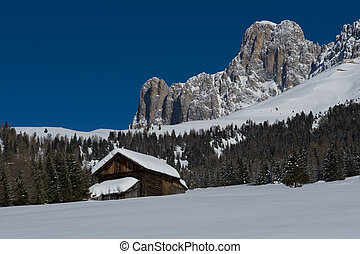 Chalet in the Dolomiti - Chalet and trees under the snow in...