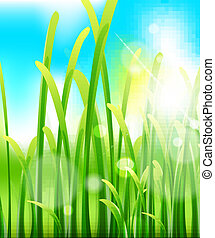 Green lush grass and sky. Nature macro background