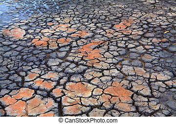 Druoght Rain falls on dry parched cracked earth -...