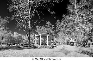 infrared photo of park and gazebo