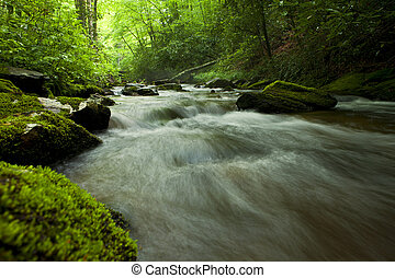 cascade in north carolina mountains - cascade in deep forest...
