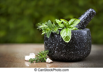Mortar and Pestle with Fresh Herbs - Mortar and pestle with...