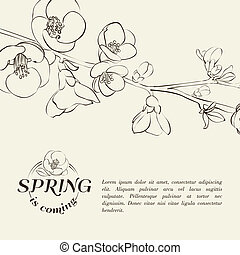 Chinese flowers branch Vector illustration