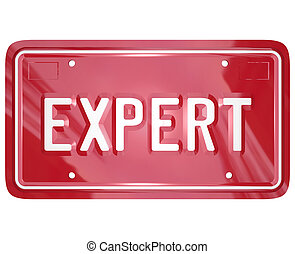Expert word on red car license plate to illustrate the...