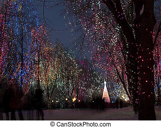 Christmas lights - Christmas decorations outdoors - lights...