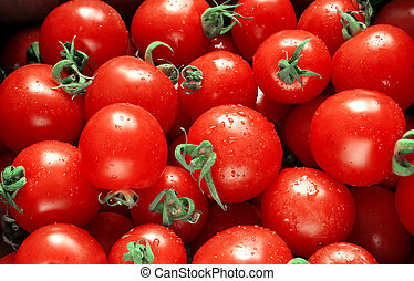 wet red tomatoes taken closeup.