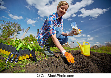Female gardener - Image of young female sowing seed in the...