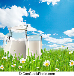 Milk jug with glass in grass