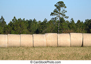 Landscape Hay Bales Under Blue Sky