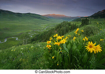 East River, CO - East River from Gothic Road near Crested...