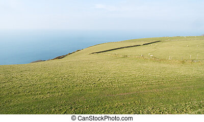 Exmoor - Pasture at Exmoor national park