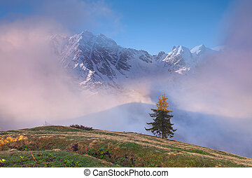 Early spring in the Caucasus mountains.
