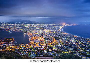 Hakodate, Japan aerial view.
