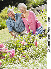 Senior couple working in garden flowerbed
