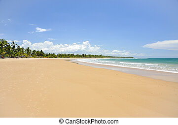 Beach of Taipu de Fora, Bahia Brazil - Beach at low tide...