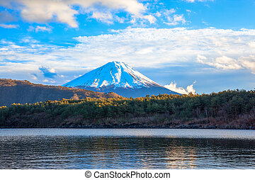 Lake Saiko and Mount Fuji - Lake Saiko, Mount Fuji and...