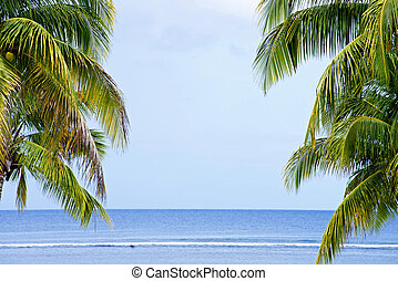 Landscape of Indian Ocean with palm trees - View of Indian...