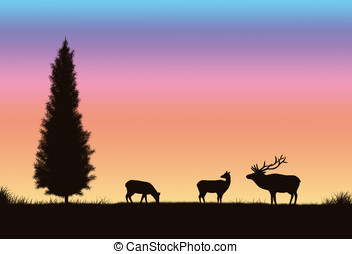 elk silhouette - illustration, colorful sunset and...