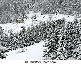 isolated hut in the mountains with a lot of white snow just...