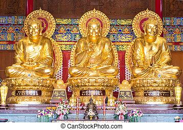 Buddha, bendecir, presidente