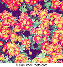 Red flowers background with retro filter effect
