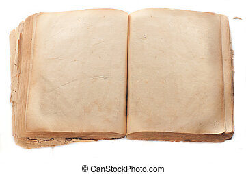 Two blank Pages in ancient Book - blank pages of the ancient...