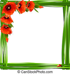 Floral frame with red poppies and ladybirds. Vector...