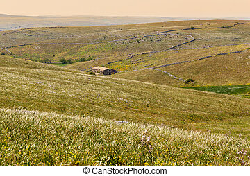 Pasture - a beautiful rural landscape with hills and a...