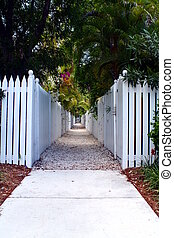 Picket Fence Walkway - A walkway lined by white picket...