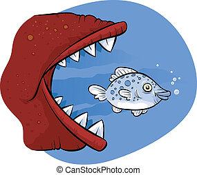 grande, pez, comida, poco