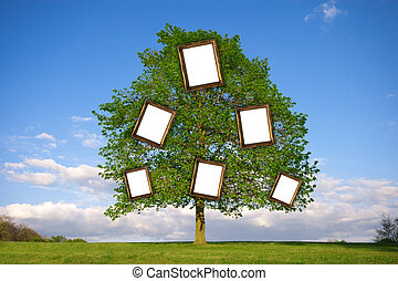 Family Tree - Lonely tree with empty picture frames re:...