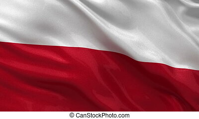 Flag of Poland seamless loop - Flag of Poland gently waving...
