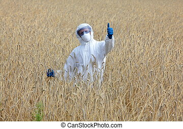 on gmo filed - success - agricultural engineer with thumb up...