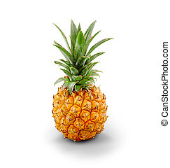 Young Pineapple - isolated - Fresh Pineapple, professional...