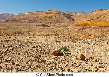 Negev - Stones of Grand Crater in Negev Desert, Israel
