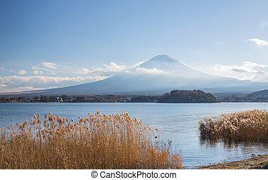Kawaguchigo lake Fujisan - Mountain Fuji fujisan from...