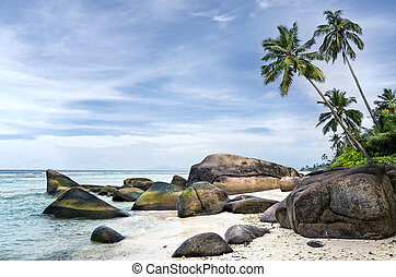 Spectacular palm-fringed beach of tropical island - Anse aux...