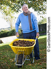 Senior man collecting autumn leaves in wheelbarrow