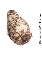 Taro root isolated on white - Colocasia esculenta taro root...
