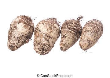 Taro root on white - Row of four Colocasia esculenta taro...
