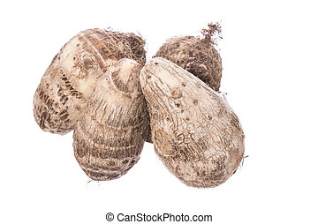 Taro root - Four Colocasia esculenta taro roots isolated on...