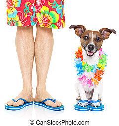 two on vacation - dog and owner ready to go on summer...