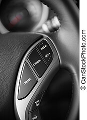 Steering wheel commands of modern luxurious car